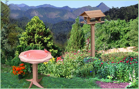 Bird Feeders and Bird Related Products